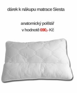 anatomicky-polstar